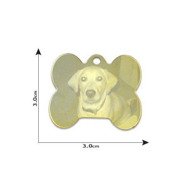 Pet tag / Dog bone Photo Pendant