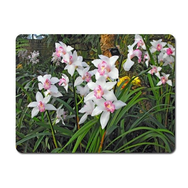 Extra Large Rectangle Glass Photo Chopping Board