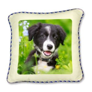 Printed photo Cushion with blue and silver piping