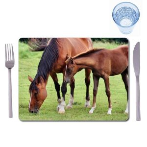 Set of 4 extra large photo placemats
