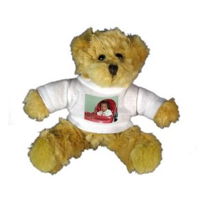 Cute Plush Teddy Bears