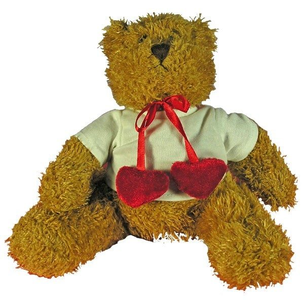 Personalised Teddy Bear with red velvet bow-tie