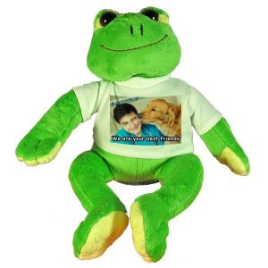 Personalised soft toy Frog