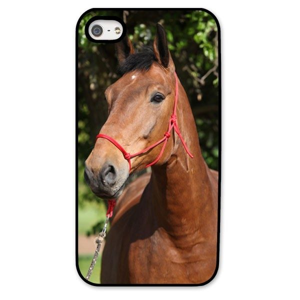 iPhone 5s Black Hard Moulded Plastic Case