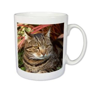 Cambridge Bone China Photo Mug